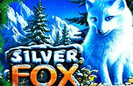Игровые автоматы Silver Fox